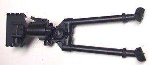 Zweibein Walther